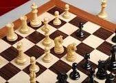 جاب الله يحرز ذهبية السلام للشطرنج